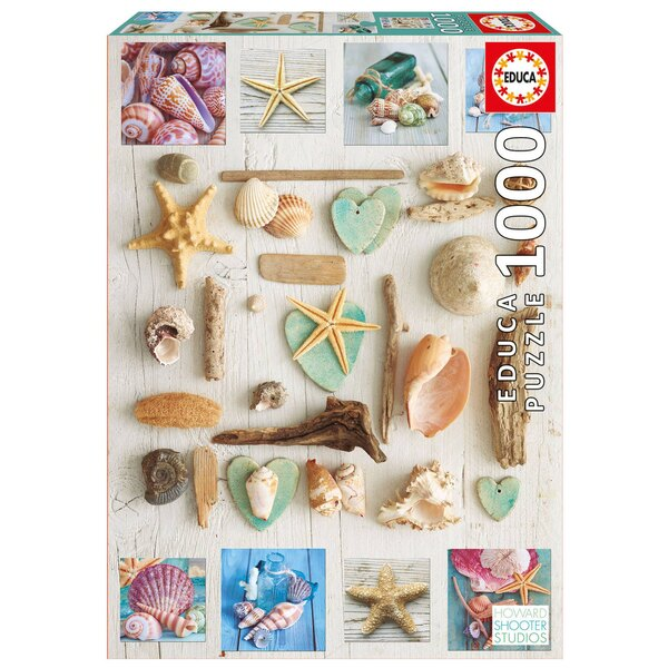 Puzzle Collage of shells