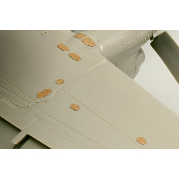 Grumman E-2C Hawkeye surface panels (designed to be assembled with model kits from Kinetic)