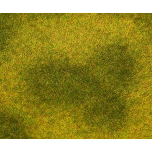PREMIUM Landscape segment, Meadow, light green