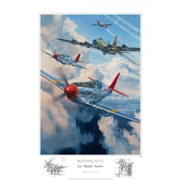 FB - P51c Mustang Tuskegee Airmen Lee Archer