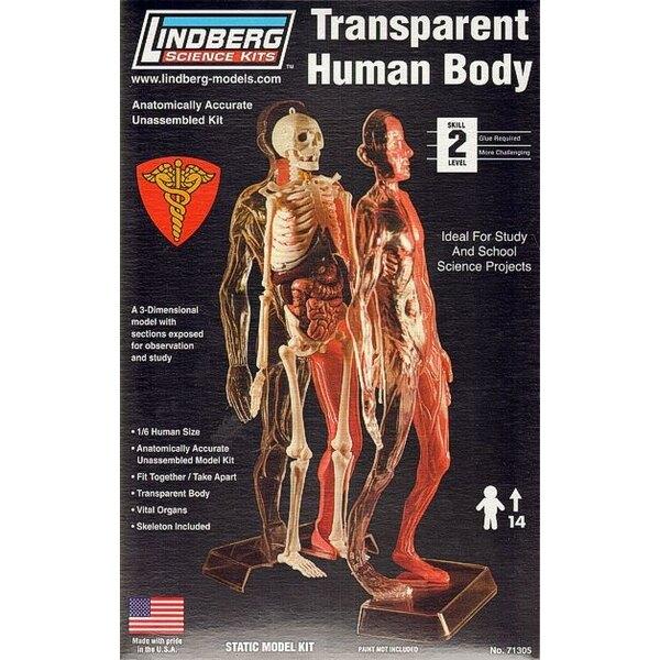 Transparent Human Body