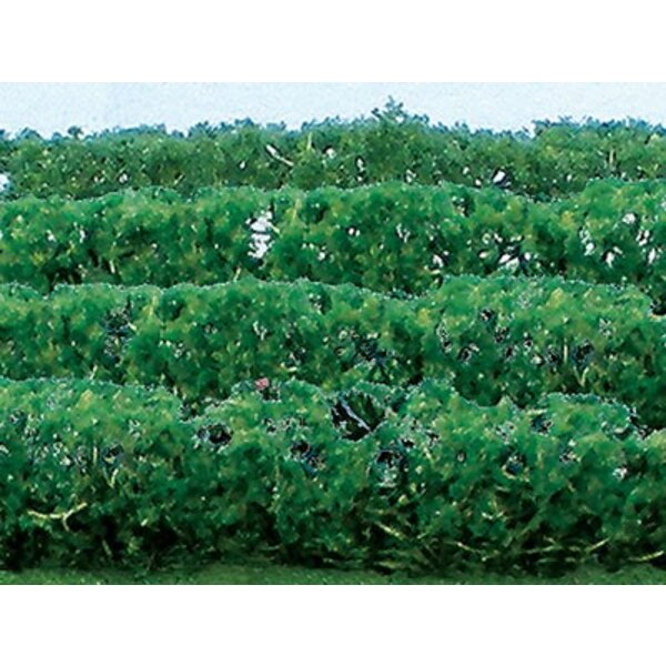 HEDGE EVERGREENS 125x9x15mm - HO SCALE