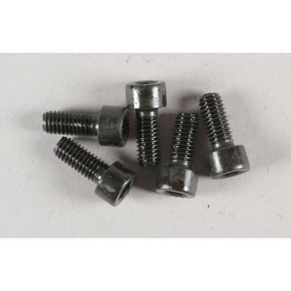 Btr screws M6x14 ( 5p)