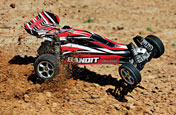 RADIO-CONTROLLED CARS READY TO USE (RTR)